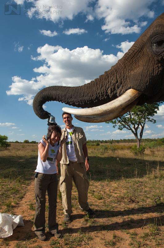 Magda Pierzyna podczas akcji ratowania najbardziej zagrożonego gatunku w Afryce – czarnych nosorożców./fot. Joanna Nowicka