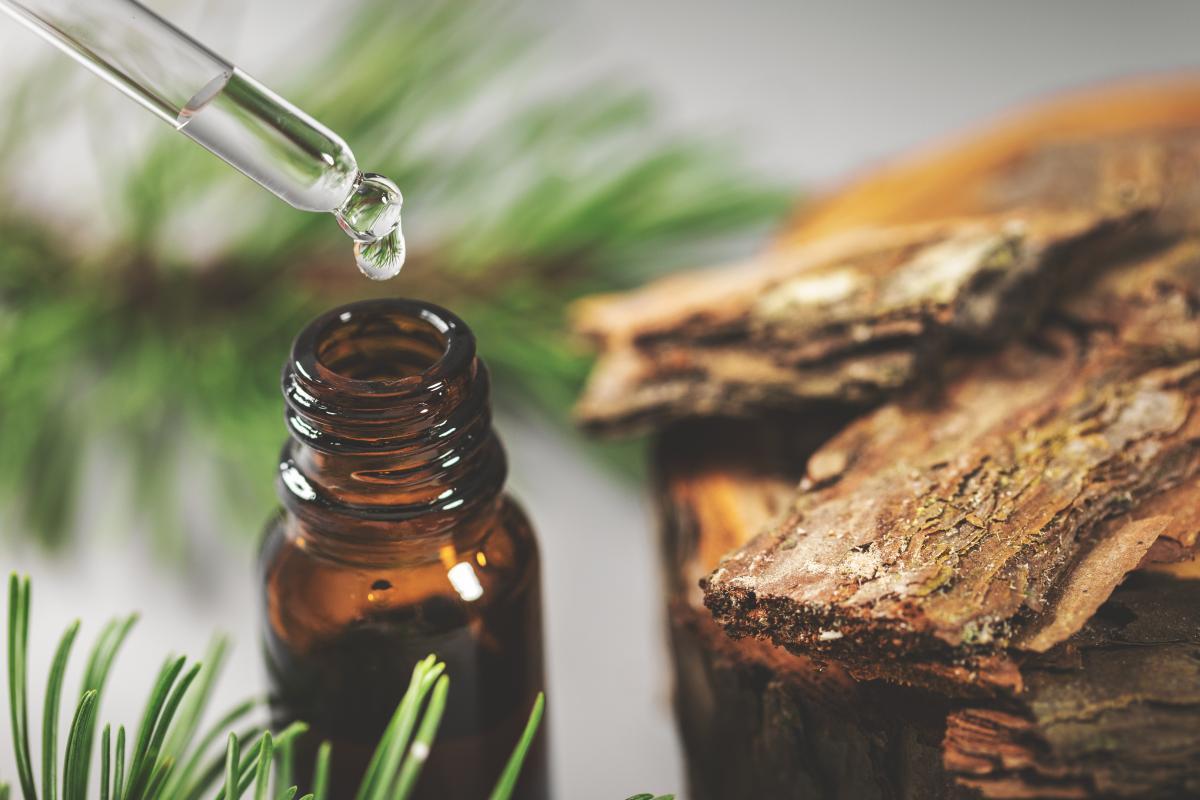 olejek pichtowy zastosowanie