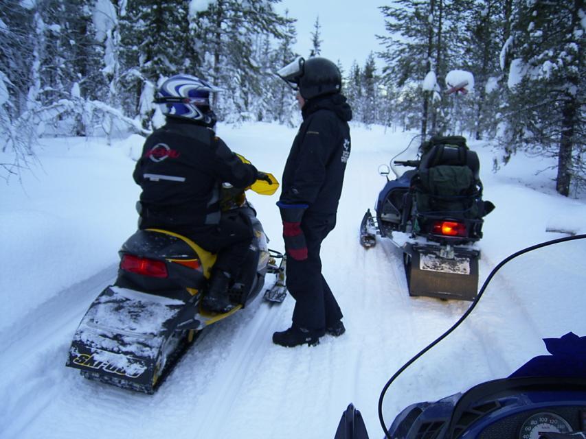 Sniezne safari w Laponii