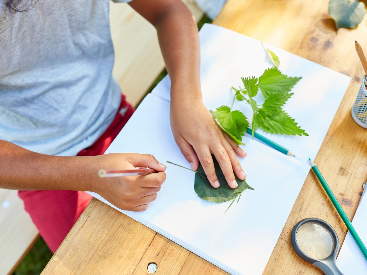 Praca na Dzień Ziemi z motywem roślin