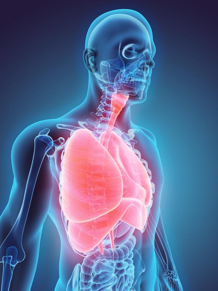 przeżywalność w raku płuc