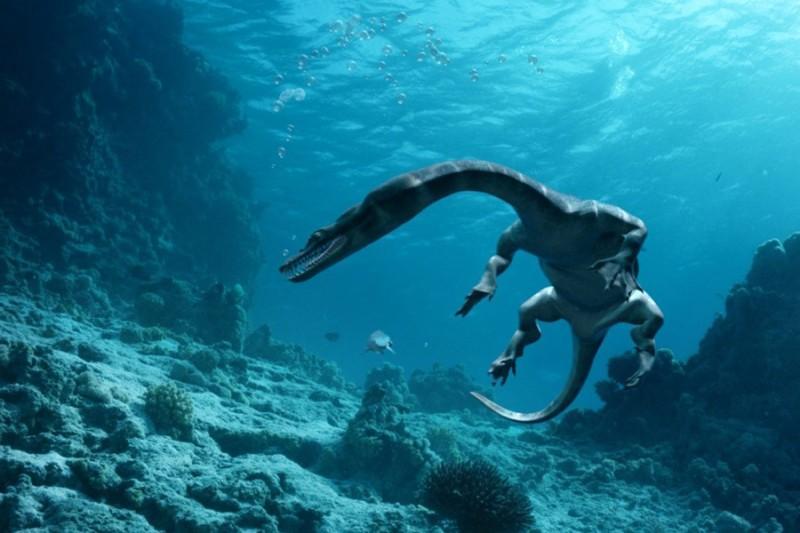Sea Rex 3D. Podróż do prehistorycznego świata (reż. Pascal Vuong, Ronan Chapalain)