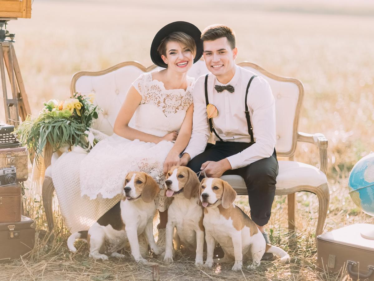 Sesja ślubna tematyczna z psem