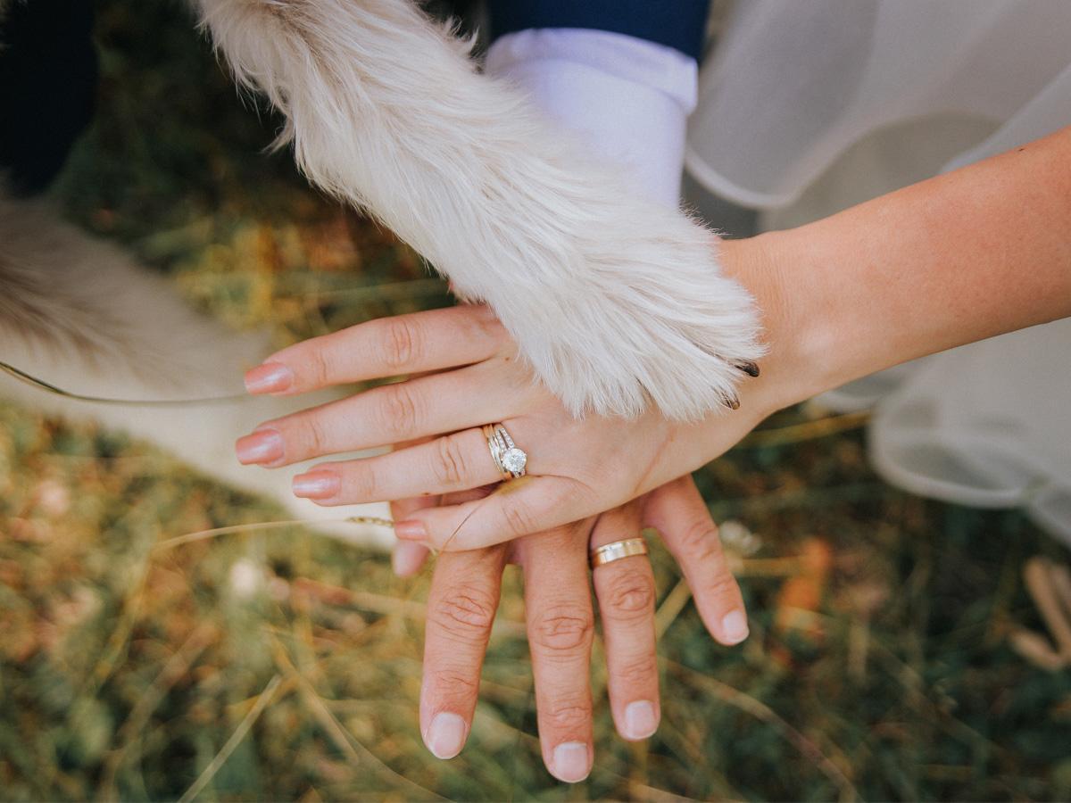 Sesja ślubna z psem zbliżenie na dłonie