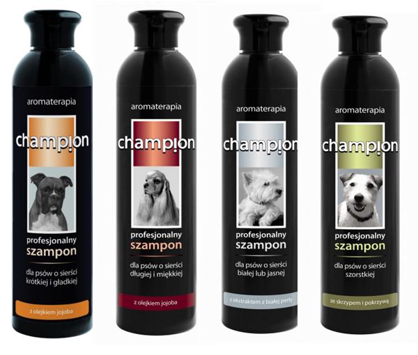 szampony dla psów Champion