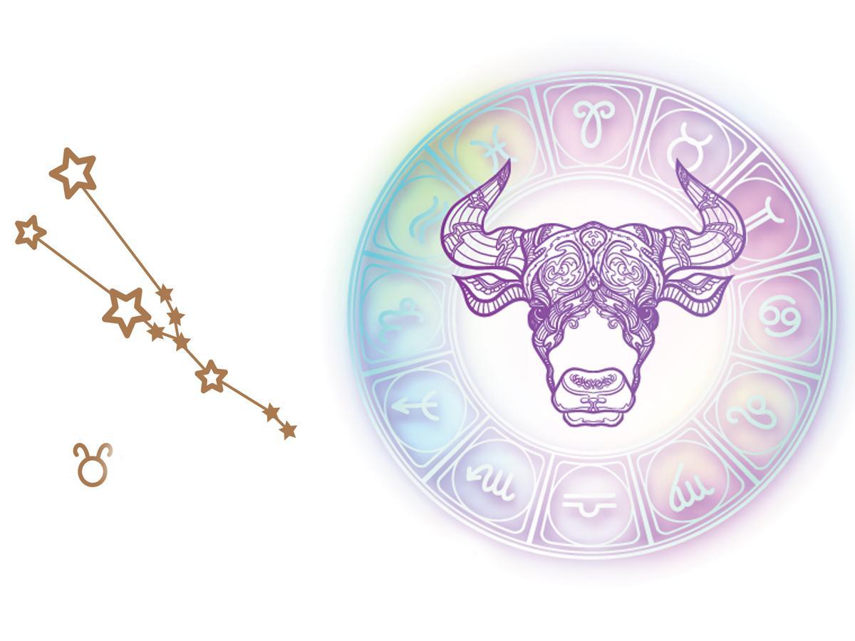 Znak Zodiaku Byk Tatuaż Znak Zodiaku Te Wzory Nigdy Nie
