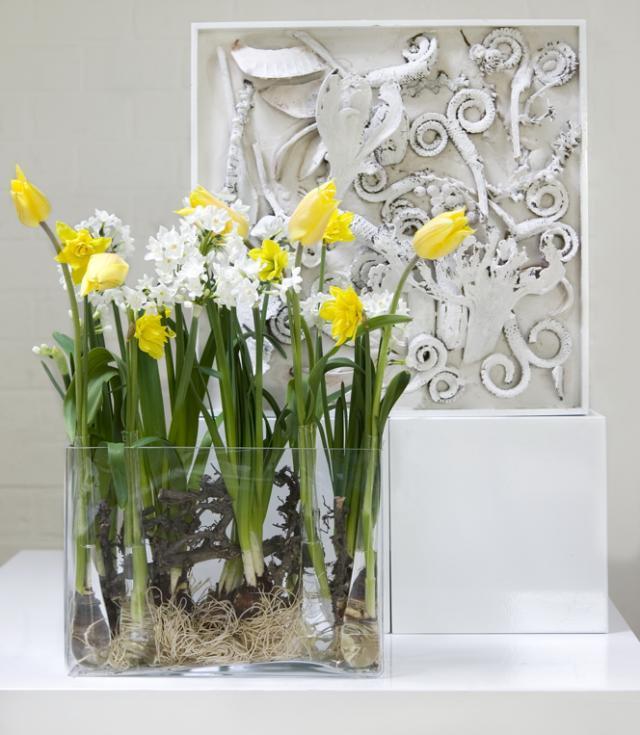Narcyzy, tulipany i żonkile