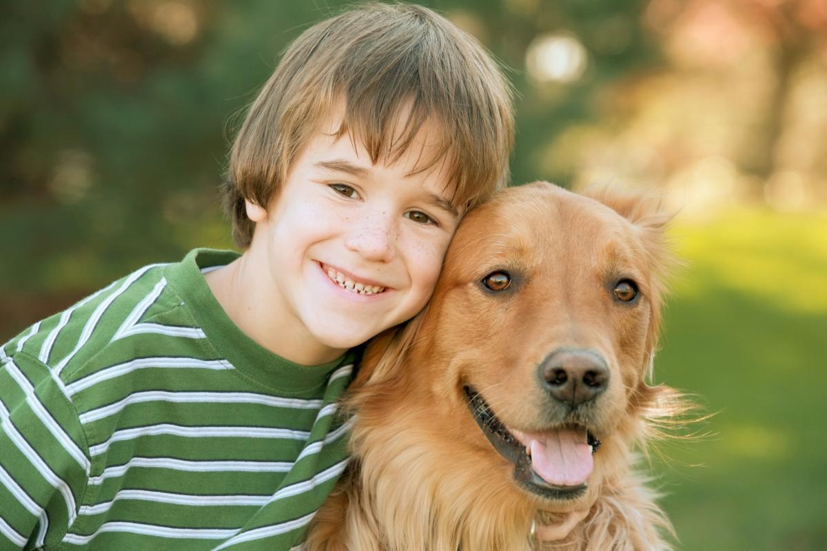 dogoterapia, pies, zwierzę, chłopiec, fotolia