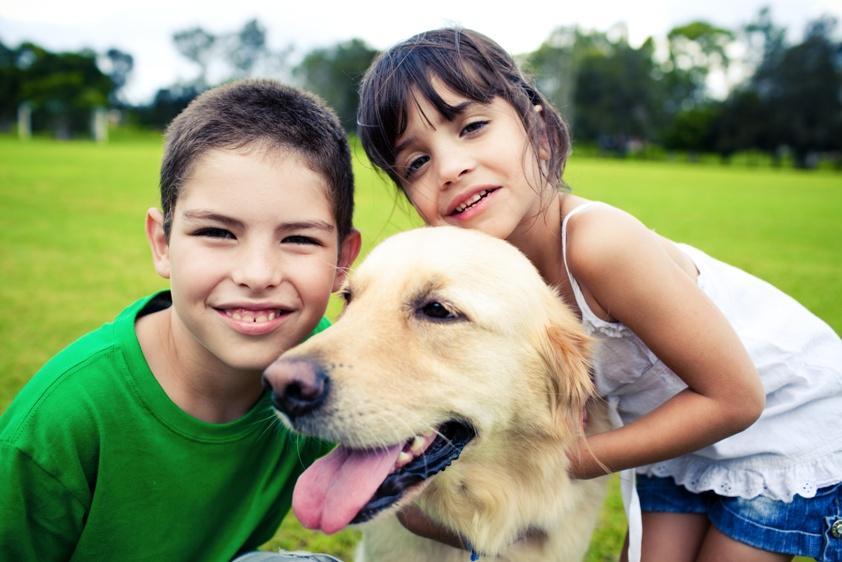 dzieci, pies, fotolia, psy