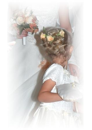 Zdjęcia D J Dekor Dekoracje ślubne I Okolicznościowe Baza Firm