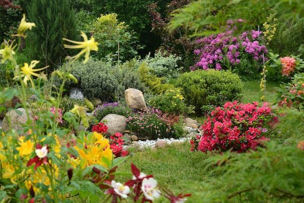 Skalniaki w ogrodzie