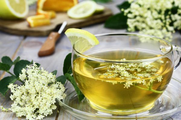 Herbata ziołowa z czarnym bzem