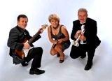 ACCESS    zespół  muzyczny - Szczecin-wesela - AKORDEONISTA