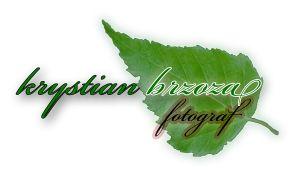 Krystian Brzoza - fotografia ślubna