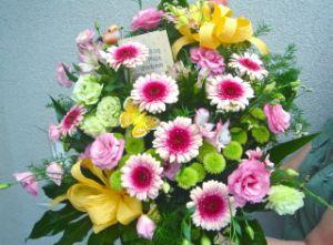 Kwiaciarnia Rosa Pszczyna i Żywiec - Kwiaty na telefon!