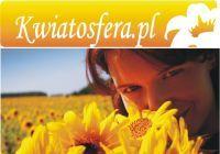 KWIATOSFERA.PL - Trójmiejska Kwiaciarnia Internetowa