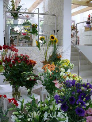 PROTEA Kwiaciarnie Bożena Cebula