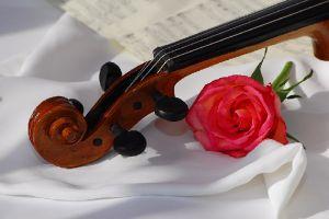 skrzypce, ślub, skrzypek na ślub, Warszawa, oprawa muzyczna
