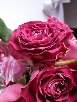 Studio Atamaris - Pracownia florystyczno - dekoratorska