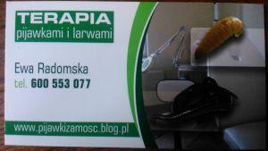 Terapia pijawkami i larwami much- Zamość, Tomaszów Lub.