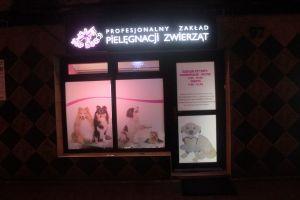 TopDog Katowice Strzyżenie psów,Trymowanie,Psi fryzjer
