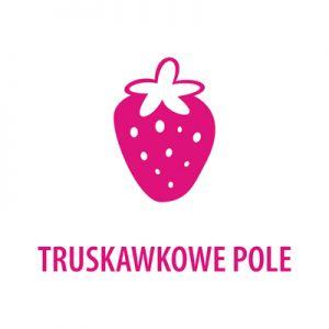 Truskawkowe Pole - pracownia wizażu, stylizacji i kosmetyki