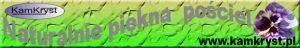 www.KamKryst.pl