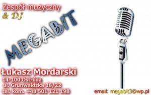 """Zespół muzyczny """"MEGABIT"""""""
