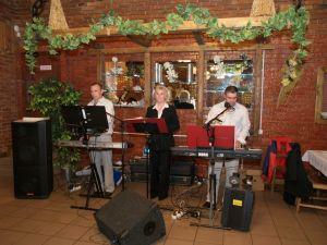 zespol muzyczny THE TRIO BAND
