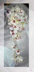 Dekoracje weslne Limanowa, dekoracje weselne Mszana Dolna, florystyka