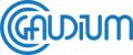 Gaudium - Specjalistyczna poradnia narządu słuchu i mowy