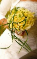 Kwiaciarnia Tillandsia