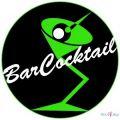 Obsluga barmanska; pokaz barmanski; weselny drink bar; catering alkoholowy;