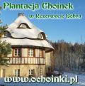 Plantacja Choinek w Rezerwacie Bobra