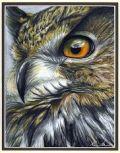 Profesjonalne Studio Tatuażu OWL TATTOO