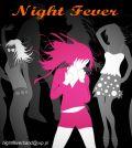 Profesjonalny zespół muzyczny NIGHT FEVER