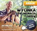Wycinka drzew Wrocław ARBOR 601 586 913.