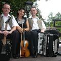 Zespół muzyczny SUPER TRIO