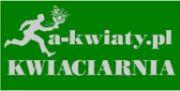 a-kwiaty.pl Kwiaciarnia internetowa wyślij z nami kwiaty do Polski i w świat!