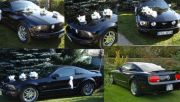 Auto do Ślubu Mustang GT