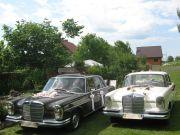 Auto do ślubu Zamość mercedes do ślubu limuzyna do ślubu