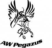 AW Pegazus Drukarnia producent pudełek ekskluzywnych