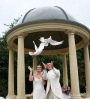 Białe Gołębie na Ślub - symbol Szczęścia i Miłości