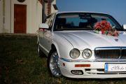 Biały Jaguar do ślubu - Rzeszów