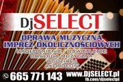 DjSELECT.pl - Dj akordeonista