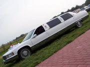 DREAM -CAR