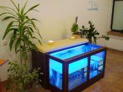 Fish SPA Opole