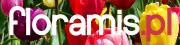 Floramis Kolorowy Ogród