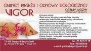 Gabinet Odnowy Biologicznej i Masażu VIGOR