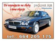 Jaguar XJ8 klasyk w wśród Jaguarów, pachnąca skóra i drewno